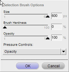 Selection brush options