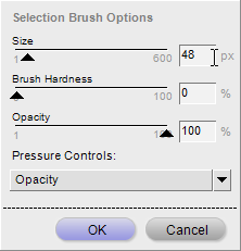Brush option