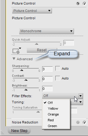 Capture NX2: Picture Control BW filter options