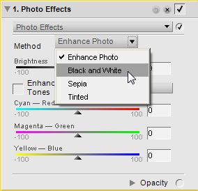 Photo Effect Black and White option